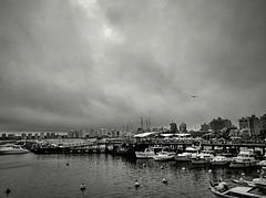 XP70_DSCF2368z2 (A. Neto) Tags: xp70 fujifilm fujifilmxp70 blackwhite bw port boats marina skyline storm puntadeleste uruguay sea seascape