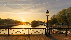 Lever de soleil sur le Pont des Arts (photo.amateur78) Tags: sunrise leverdesoleil back contrejour paris ledefrance france fr canon5dmarkii pontdesarts goldenhour heuredore iledelacite