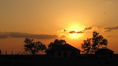 SX10-IMG_10776 — EXPLORED (old.curmudgeon) Tags: sunset silhouette farmhouse eclipse texas aviary annulareclipse 5050cy canonsx10is