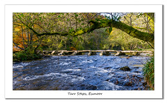 Tarr Steps (Travels with a dog and a Camera :)) Tags: uk autumn trees england photoshop river dc october pentax unitedkingdom steps sigma somerset 1020mm 41 2010 tarr exmoor lightroom kx pentaxkx dulverton tarrsteps cs6 1456 exemoor sigma1020mm1456dc lightroom41 photoshopcs6