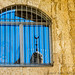 Reflections from the Armenian Quarter of the Old City of Jerusalem