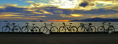 Bikes on the seawall (Alex Ramon) Tags: sunset sky bike bicycle silhouette skyline vancouver horizon silhouettes bikes seawall bicycles