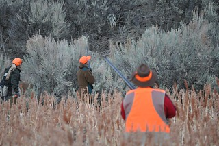 Oregon Luxury Upland Hunting 10