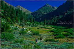 IMGP4813 copy (L.F.Lee) Tags: california camping nationalpark hiking sequoia sequoianationalpark 2012