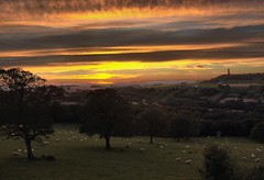 At the end of the day (nondesigner59) Tags: trees sunset sky west nature composite clouds sheep yorkshire castlehill huddersfield eos50d farnleytyas nondesigner nd59 copyrightmmee