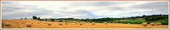 Autumn is here.... (PhotographyByKristina (400,000 + views)) Tags: autumn field yellow golden nikon hay bails d90 sigma1020