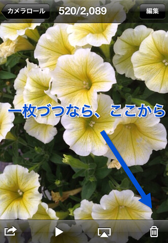 IMG_3063