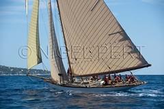 _NPJ8333_Nice2012_N_Pert (nigelpert) Tags: nice 2012 tuiga yachtsclassiques rgatesdenice