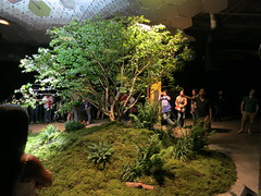 Lowline Tech Demo