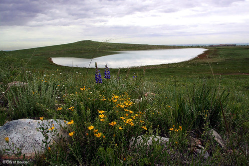 Photo - Jewell Mountain Lake
