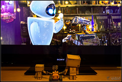 Day 52 . Eve (Only in RAW ) Tags: eve japan toys happy robot amazon box explorer mini days cardboard pixar danny 365 walle danbo amazoncojp revoltech danboard minidanbo