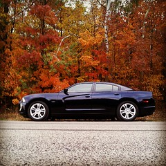 Gorgeous & sexy. Beauty & beast. Man made & nature. (Snapshots by Nixy J Morales) Tags: reflections square squareformat hefe charger awd 19s meguiars 2011 nixy iphoneography gtracer347 instagramapp uploaded:by=instagram