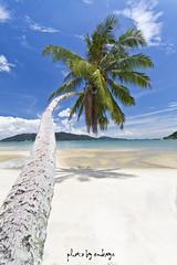 alone (em kays) Tags: blue sea sky seascape tree beach island sand alone coconut pangkor malaysia pulau lanscape mk lumut melayu perak perkampungan emkays