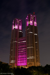 The Tokyo Metropolitan Government Office Building with the Pink Ribbon (Yuripere) Tags: gettyimagesjapan12q3 gettyimagesjapan12q4 gettyjapanland