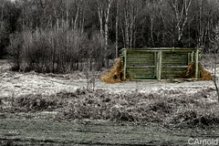 Shelter (justyourcofchi) Tags: wood england colour texture nature grass barn countryside model woods flickr photographer edited environment shelter monocrome chiarnold justyourcupofchicom justyourcupofchi