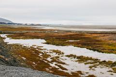Arctic Tundra XIV (danielfoster437) Tags: adventure arctic arcticcircle arcticsummer arctictundra extremeterrain landscape mountain nature outdoors spitsbergen summer svalbard svalbardsummer terrain tundra wilderness
