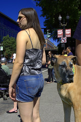 The Blind Hip Shot (swong95765) Tags: woman female lady dog canine greatdane street cute crapshoot