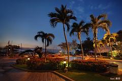 Nongsa Resort @blue hour (Ken Goh thanks for 2 Million views) Tags: batam nongsa resort blue hour night coconut tree swimming pool pentax k1 sigma 1020