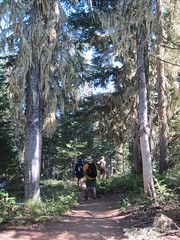 Benson Lake Trail (Perkules) Tags: willamettenationalforest oregon bensonlaketrail hikes dan cornelius jeannette