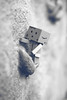 The aventures of Boxy (céline._.photographie) Tags: danbo danboard japanese figure amazon cute amazing photo photography photographie photographer nikon nikond600 passion 18 50mm