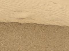 (aliciap.clausell) Tags: duna dune arena aliciapclausell fuerteventura relax minimalismo minimalisme belleza nature naturaleza macrosdenaturaleza macro
