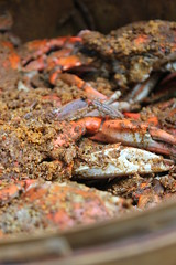 IMG_7010.JPG (TimStClair) Tags: crab steamedcrab bluecrab maryland baltimore