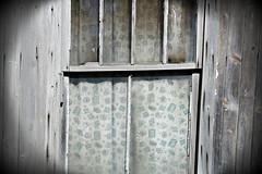 Once Fancy (Doris Burfind) Tags: window farmhouse farm curtain decay weathered