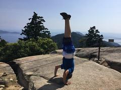 HotD atop Misen (Stop carbon pollution) Tags: japan  honshuu  hiroshimaken  miyajima