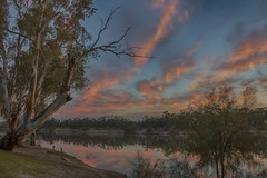 Reverse sunset. (vikkikay) Tags: murrayriver mildura victoria sunset sunraysia river gumtree sky reflections