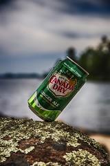 Canada Dry Ginger Ale (Russ Zara) Tags: sonyslta77v zara rzara russzara russ canadadrygingerale tin can pop softdrink ginger water rock stonylake ontario canada kawarthalakesregion kawartha kawarthalakes drpeppersnapplegroup upperstoneylake