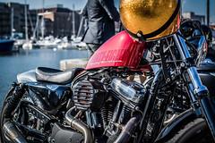 Harley Forty-Eight (Jan Moons) Tags: distinguishedgentlemensride dgr2016 disitinguished gentlemen ride antwerp antwerpen belgium rideout dapper nikon nikond600 50mm nikkor 50mm18 harley fortyeight bobber chopper bike bikeride