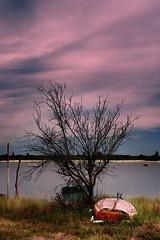 Barque Arcachon (Guillaume_BRIAND) Tags: nikon d7100 2470 arcachon plage arbre barque landscape paysage couleur