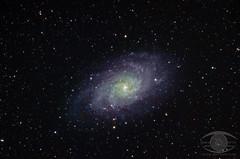M33 -  the Triangulum Galaxy (Dark Arts Astrophotography) Tags: space stars sky star galaxy science night nature natur m33 triangulum astrometrydotnet:id=nova1742775 astrometrydotnet:status=solved