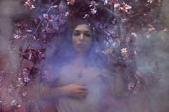 Untitled (Rebecca Dimovski) Tags: pink flowers tree water girl fog cherry photography model blossom smoke dream surreal floating float twigs