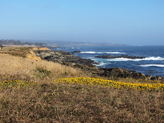 View from Point Cabrillo Lighthouse, California (Elaine Park) Tags: lighthouse pointcabrillo