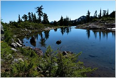 Park Butte Tarn (Go4Hike) Tags: mountains nature landscape washington trails northcascades hking washingtonhiking parkbutte hikingwashington northcascadeshiking