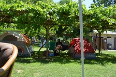Hauli Huvila Camp