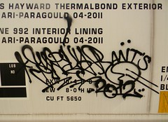 Swear (Sk8hamburger) Tags: train graffiti hands hand tag ant style tagging freight swear handstyle gtl grainer allnation allnationteam