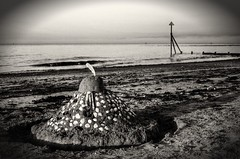 man of war (keehotee) Tags: castle mono sand map who dr feather shell drwho dalek sandcastle mapping tone exmouth mapped