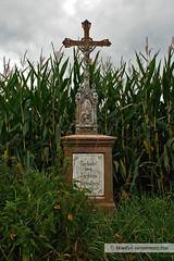 Wegkreuz / wayside cross (Howdys) Tags: religion jesus feld wiese himmel wolken kreuz schild mais gras engel christus glaube badenwuerttemberg wegkreuz oberschwaben deitschland flickraward