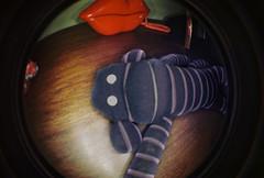 Samus 4 Facebook! (greatkithain) Tags: film iso100 lomo lomography flickr fisheye toycameras ringflash fisheye2 analogico flickrstars flickrestrellas mygearandme