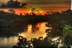 Sunrise on Ainger Creek (flutterbye216) Tags: water silhouette sunrise florida englewood canoneost1i flutterbye216 challengeclubchampion