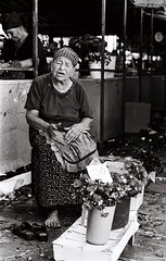 Flower Vendor (Janko Jerinic) Tags: bw white black monochrome documentary