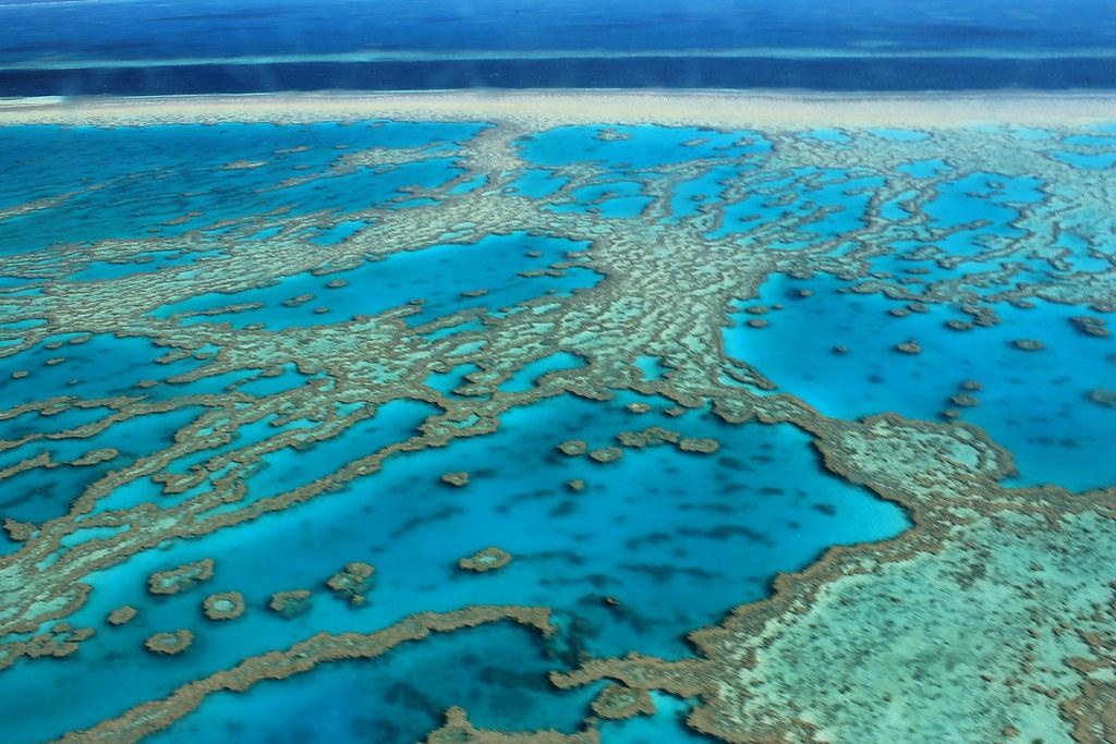 great-barrier-reef by FarbenfroheWunderwelt, on Flickr