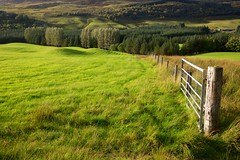 HFF Scotland (Perry McKenna) Tags: light green fence scotland hills rolling rollinghills fortwilliam a82 speanbrigde