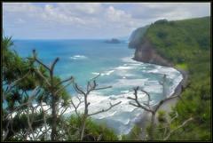 Coast (The Surveyor) Tags: ocean blue green beach hawaii pacific north flickraward