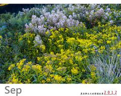 Hehuanshan 20120911-C68Q6779- (higrace ) Tags: taiwan   hehuanshan hehuanshannationalforestrecreationarea