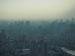 Tokyo Landscape #4. (Simon*N) Tags: city travel sunset sky urban cloud building tourism japan architecture skyscraper landscape outdoors tokyo evening town bill haze shinjuku view capital illumination olympus aerial  tokyotower metropolis material gradation         omd distant   highangle unmanned    subcenter    urbanized     em5 touristdestination         groupofbuildings