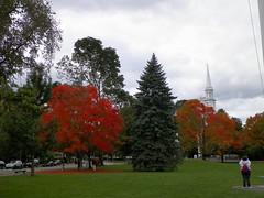 Lexington MA (Littlerailroader) Tags: autumn fall seasons lexington massachusetts newengland autumninnewengland lexingtonmassachusetts