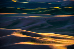 Palouse Dusk (DMontalbano) Tags: 500px palouse whitman county washington sunset colfax pacific northwest eastern hills wheat summer farmland scenic view rural field farm agriculture countryside grass country beautiful green travel steptoe butte dan montalbano photography landscape landscapes